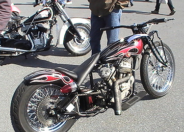radical chopper RR Oley